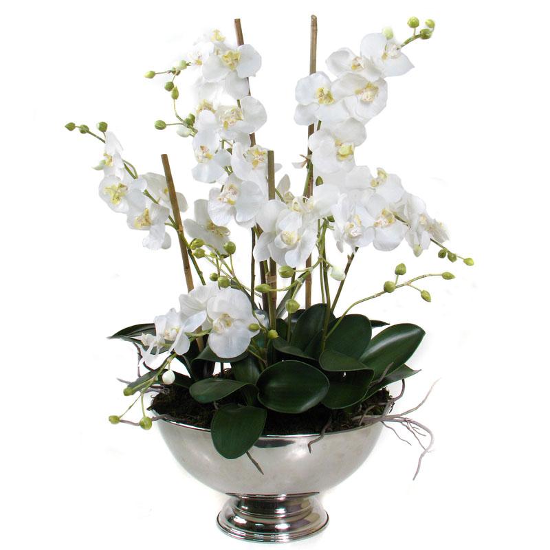 Bloomin beautiful flowers sales