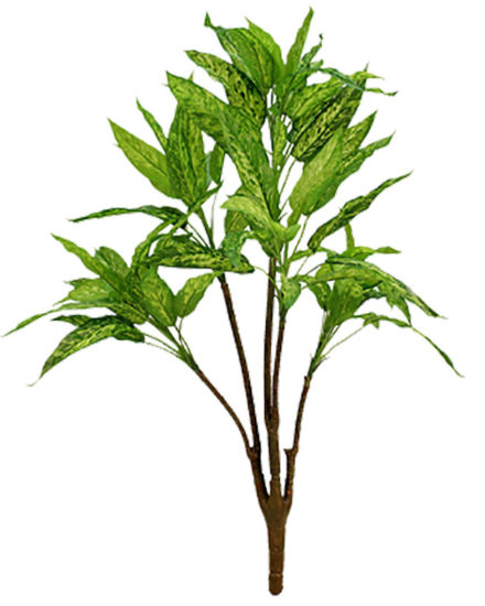 Alglonema fake artificial silk house plant for use in office and plantscaping.