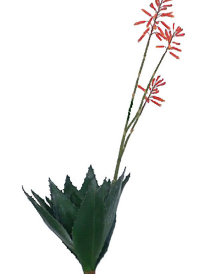 Realistic looking artificial succulent plant for sale and bulk purchase online - FLOWERING-ALOE-NO-POT