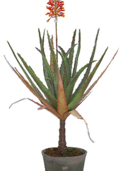 Realistic looking artificial succulent plant for sale and bulk purchase online - FLOWERING-ALOE-in-cement-pot