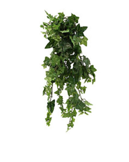 Realistic looking artificial hanging plant used in offices, home and plantscaping for sale and bulk purchase online - hanging ivy bush