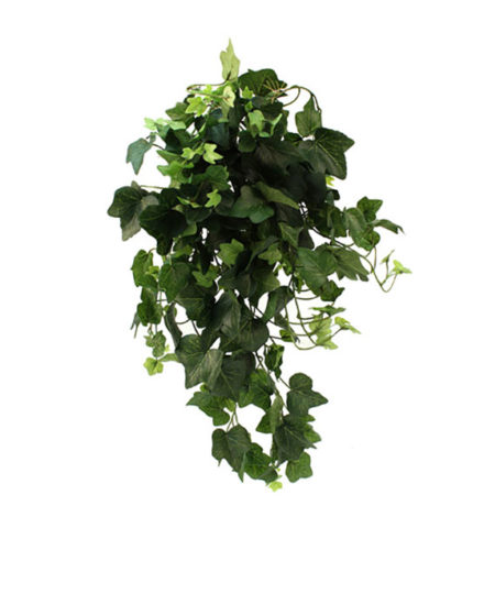 Realistic looking artificial hanging plant used in offices, home and plantscaping for sale and bulk purchase online - ivy bush