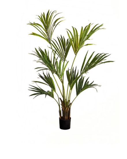 Realistic looking artificial fake tree used in offices, home and plantscaping for sale and bulk purchase online - kentia palm
