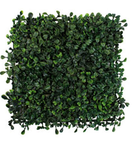 Realistic looking matting used in offices, home and plantscaping - boxwood