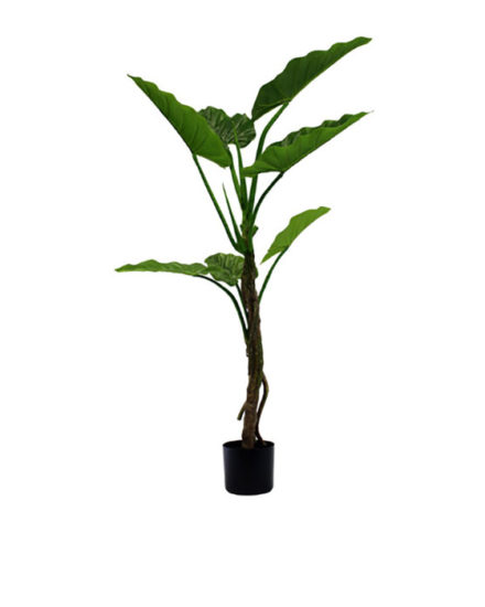 Realistic looking artificial fake tree used in offices, home and plantscaping for sale and bulk purchase online - pothos