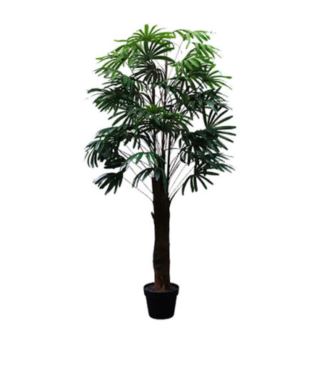 Realistic looking artificial fake tree used in offices, home and plantscaping for sale and bulk purchase online - raphis palm