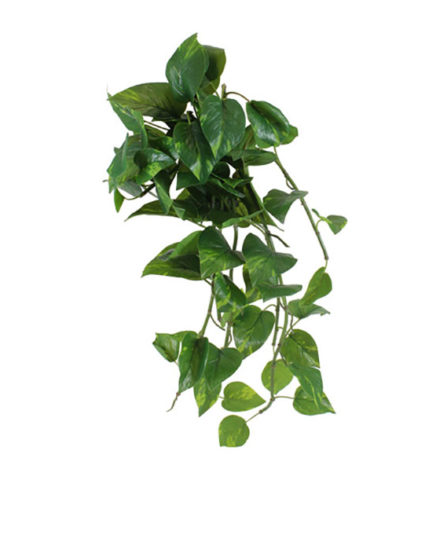Realistic looking artificial fake tree used in offices, home and plantscaping for sale and bulk purchase online - SCANDAPSUS