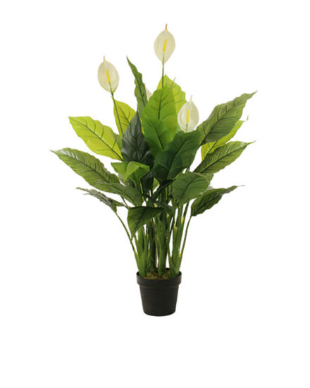 SPATHIPHYLLUM fake artificial silk house plant for use in office and plantscaping for sale and bulk purchase online.