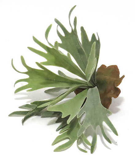 staghorn pick fake artificial silk house plant for use in office and plantscaping for sale and bulk purchase online.