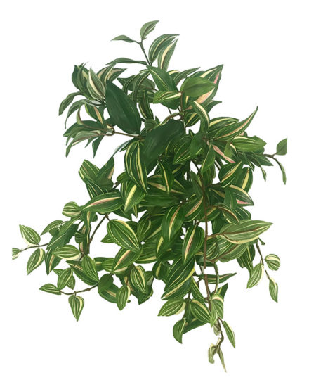wandering jew fake artificial silk house plant for use in office and plantscaping for sale and bulk purchase online.