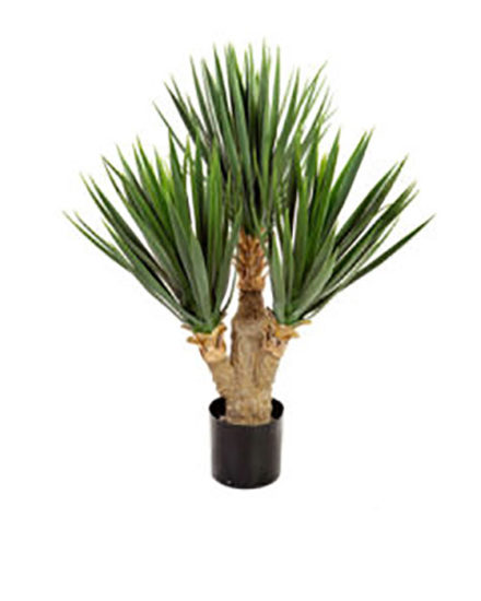 Realistic looking artificial fake tree used in offices, home and plantscaping for sale and bulk purchase online - succulent yucca
