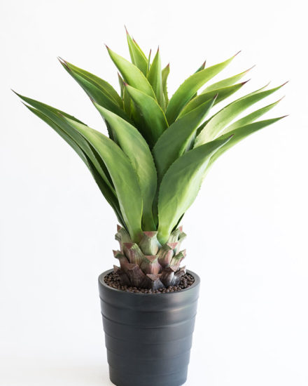 Realistic looking artificial fake tree used in offices, home and plantscaping for sale and bulk purchase online - AGAVE