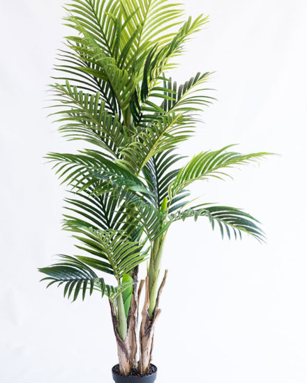 Realistic looking artificial fake tree used in offices, home and plantscaping for sale and bulk purchase online - ARECA PALM