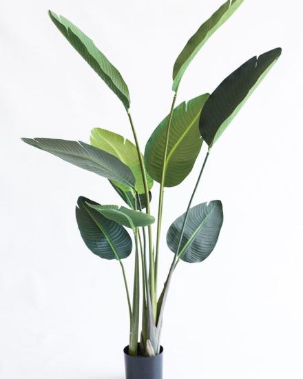 Realistic looking artificial fake tree used in offices, home and plantscaping for sale and bulk purchase online - STRELITZIA BANANA PALM
