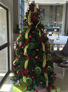 blooming-beautiful-flowers-christmas-rentals-flowers-trees-offices-homes-boardroom