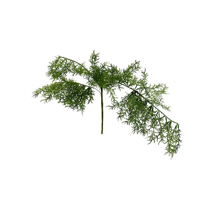 Realistic looking artificial hanging plant used in offices, home and plantscaping for sale and bulk purchase online - asparagus fern