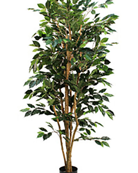 Realistic looking artificial fake tree used in offices, home and plantscaping for sale and bulk purchase online - ficus