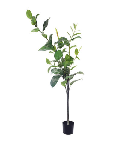 Realistic looking artificial fake tree used in offices, home and plantscaping for sale and bulk purchase online - rubber tree