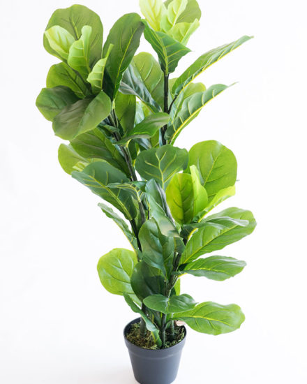 Realistic looking artificial fake tree used in offices, home and plantscaping for sale and bulk purchase online - FIGGLE LEAF FICUS