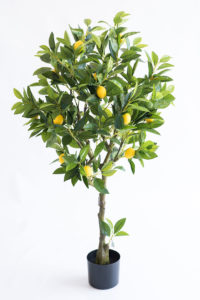 Realistic looking artificial fake tree used in offices, home and plantscaping for sale and bulk purchase online - LEMON TREE
