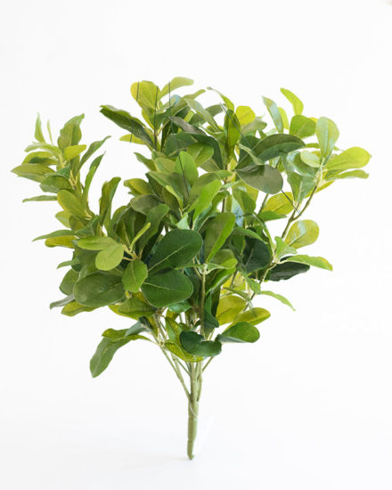 Realistic looking artificial fake tree used in offices, home and plantscaping for sale and bulk purchase online - SHEFFLERA