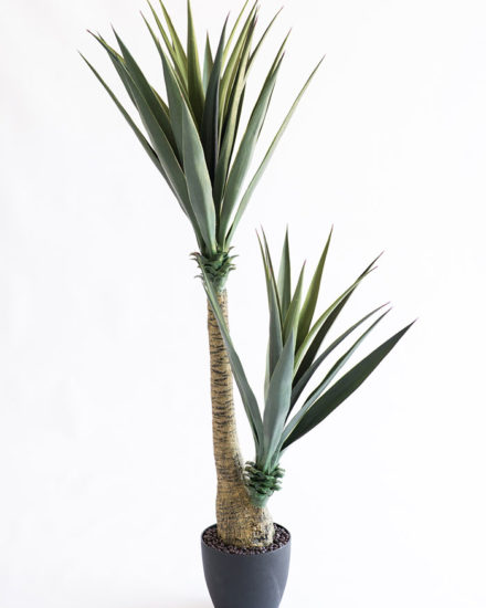Realistic looking artificial fake tree used in offices, home and plantscaping for sale and bulk purchase online - YUCCA TREE
